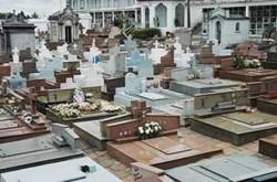 cemiterio-butanta1394716400