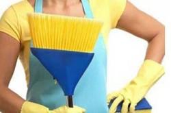Sul Brasil Empregos Domésticos
