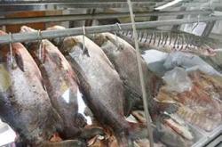 peixariabutanta1393940147