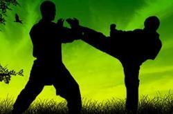Família Butantã Taekwondo